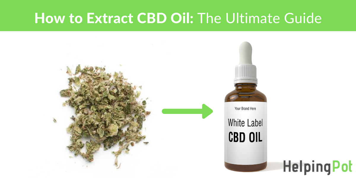 how is cbd oil made - how to extract cbd oil - choosing the best cbd extraction system for your business