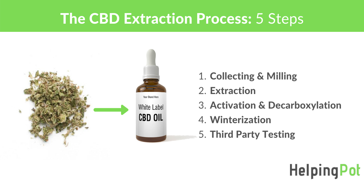 the cbd extraction process - how cbd oil is made
