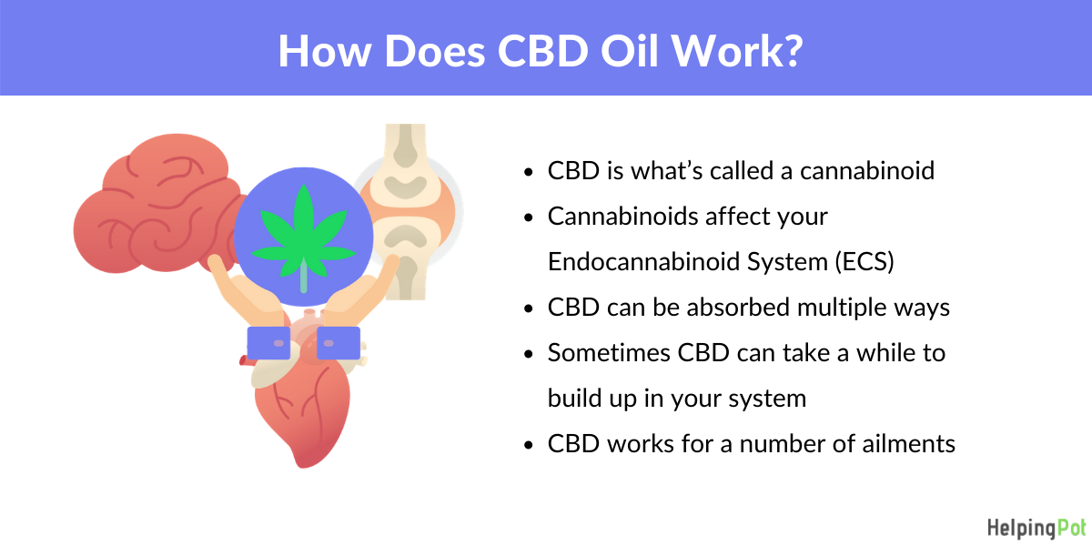 does cbd work - how it works